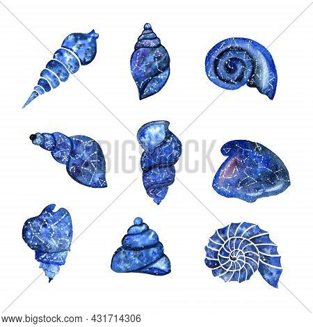 Set Of Watercolor Seashells On A White Background. Shells Of Various Beautiful And Unusual Shapes. M