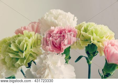 Close Up Photo Of A Pink, Light Green And White Carnation Bouquet Isolated Over Light Grey Backgroun
