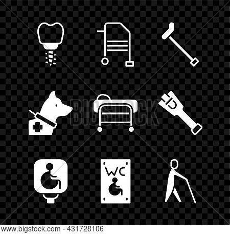 Set Dental Implant, Walker, Walking Stick Cane, Disabled Wheelchair, Separated Toilet For Disabled,
