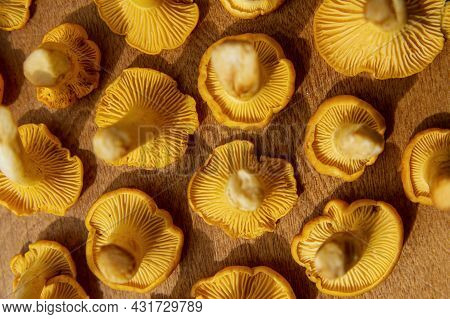 Fresh Yellow Delicious Vegetarian Chanterelle Mushroom With Beautiful Texture Of Its Cap On Wooden B