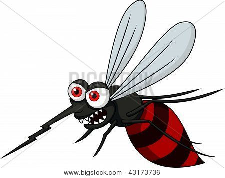 Vector illustration of angry mosquito cartoon isolated on white poster