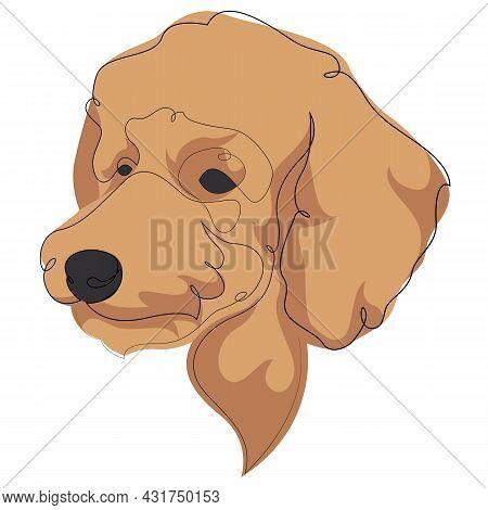 Continuous Line Brown Poodle. Single Line Minimal Style Poodle Dog Vector Illustration. Portrait.