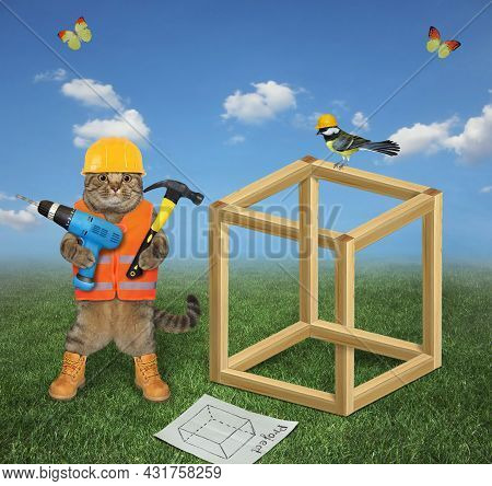 A Beige Cat Carpenter In A Construction Helmet With A Drill And A Hammer Is Building An Impossible C