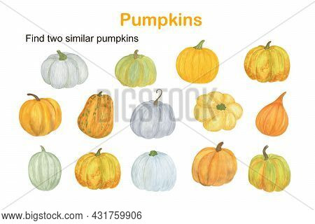 Find Two Similar Pumpkins Educational Activity For Children, Fall Autumn Puzzle Game, Simple Waterco