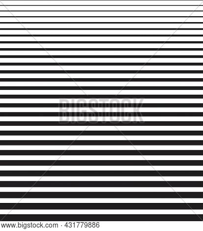 Vector Line Template Pattern, Black And White Graphic Elements. Abstract Wallpaper Print Background.