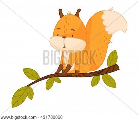 Funny Orange Squirrel Character With Bushy Tail Sitting On Tree Branch Vector Illustration