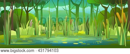Shady Summer Forest Landscape. Swampy Coast With Cattails And Reed. Flat Style. Quiet River Or Lake.