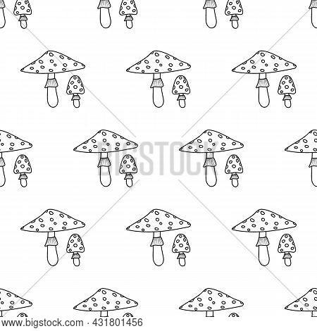 Amanita Line Pattern. Beautiful Autumn Forest Big Cartoon Mushroom.