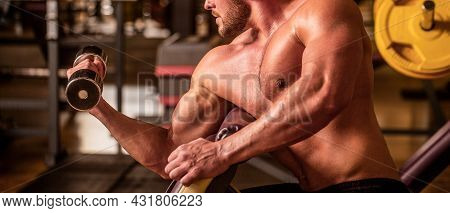 Bodybuilder Working Out With Dumbbell Weights At The Gym. Man Lifting Dumbbell In A Gym Making Exerc