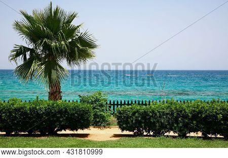Morning Promenade Along The Mediterranean Sea In Protaras Cyprus