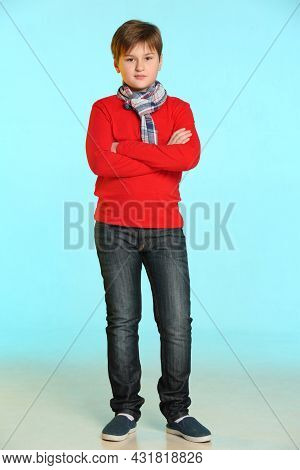 Fashionable And Aristocratic Teenage Boy In A Red Sweater And Plaid Scarf. He Poses Full-length With