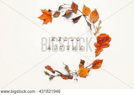 Autumn background, autumn composition, seasonal autumn leaves and Hello Autumn on the wooden background. Autumn background, autumn composition, autumn still life, autumn pattern, autumn seasonal background
