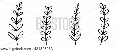 Tree Branch Icons Set. Hand Drawn Twigs Collection. Decorative Branch With Leaves. Ornament Collecti