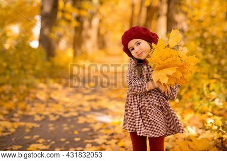 A Cute Little Three-year-old Girl With A Bouquet Of Maple Leaves In Her Hands In The Park On A Warm