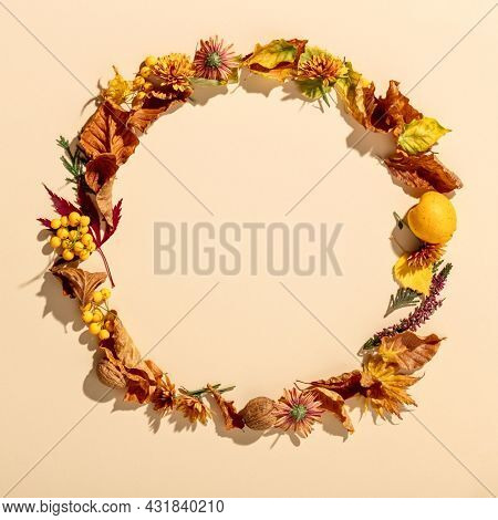Autumn wreath flat lay. Dry autumn leaves, berries, fruits and flowers. Happy Thanksgiving and Hello autumn concept, copy space