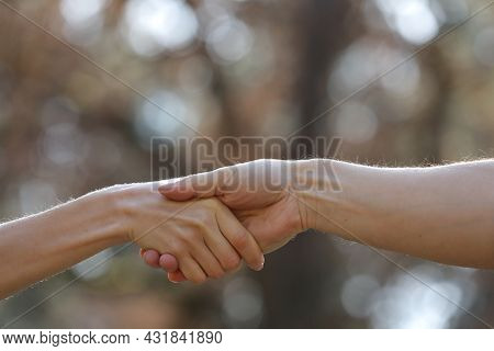 Handshake Two People On The Nature Background. Close Up Of Female And Male Holding Hands. Holding Ha
