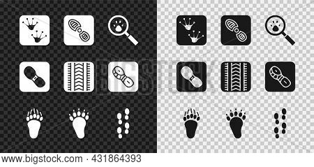 Set Frog Paw Footprint, Human Footprints Shoes, Paw Search, Bear, And Tire Track Icon. Vector