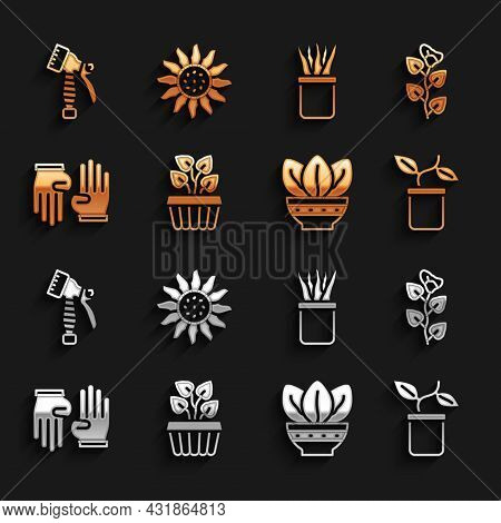 Set Indoor Plant Ivy In A Pot, Ivy Branch, Plant, Rubber Gloves, Water Spray Bottle And Flower Icon.