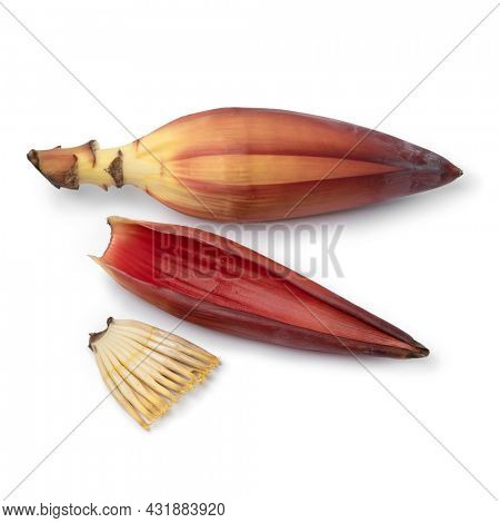 Little bananas, banana flower and leaf isolated on white background