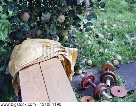 Shallow Dof Outdoor Shot Of A Jacket On A Bench And Dumbbells In An Orchard
