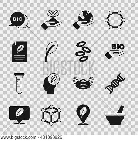 Set Mortar And Pestle, Dna Symbol, Bio Healthy Food, Hand Holding Earth Globe, Leaf Leaves, Eco Pape