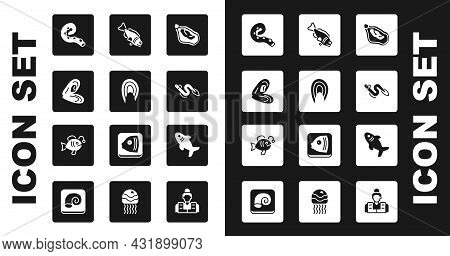 Set Mussel, Fish Steak, Octopus Of Tentacle, Eel Fish, Shark And Tropical Icon. Vector