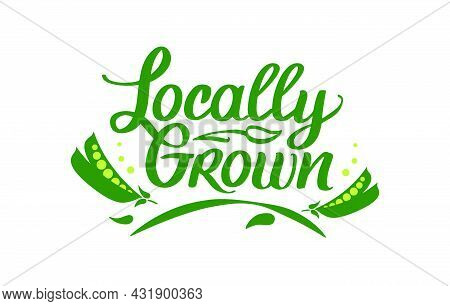 Locally Grown, Vector Logo Template. Hand Drawn Lettering With Green Peas. Label, Brand Emblem For O