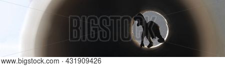 Frightening Black Silhouette At The End Of Tunnel Or Pipe. Clinical Death Concept. Web Banner. Close