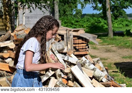 Beautiful Girl With Long Hair In White Shirt Puts Firewood In Pile. Concept Of Harvesting Firewood F
