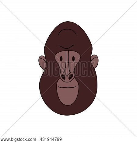 Gorilla Head Cartoon Isolated. Colored Vector Illustration Of A Primate With A Stroke On A White Bac