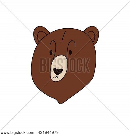 Cartoon Bear Head Isolated. Colored Vector Illustration Of A Head Of A Brown Bear With An Outline On