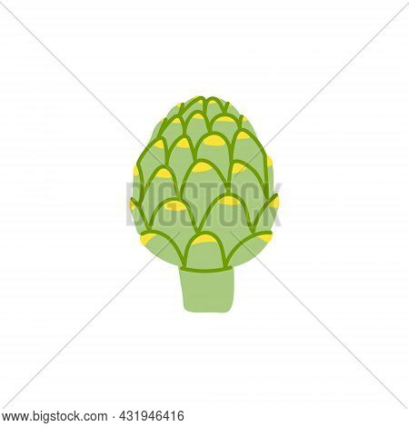 Cartoon Artichoke Isolated. Vector Stock Illustration Of An Artichoke. Delicacy Vegetable Culture On
