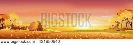 Autumn Rural Landscape In Evening Light With Sunset, Yellow, Pink,orange Sky Background,vector Carto