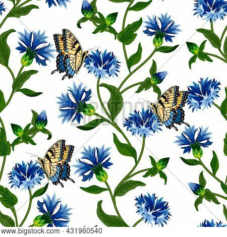 A Pattern Of Cornflowers And Butterflies.bright Cornflowers And Butterflies On A White Background In