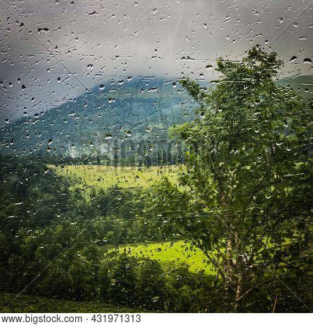 Melancholy natural countryside view seen through an window car, France