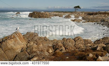 Ocean Waves And Rocks, Monterey, Northern California, Usa. 17-mile Drive Near Big Sur, Seaside Golf