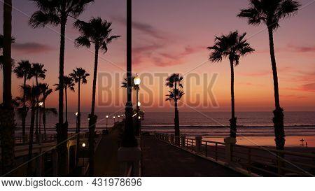 Palms Silhouette On Twilight Sky, California Usa, Oceanside Pier. Dusk Gloaming Nightfall Atmosphere