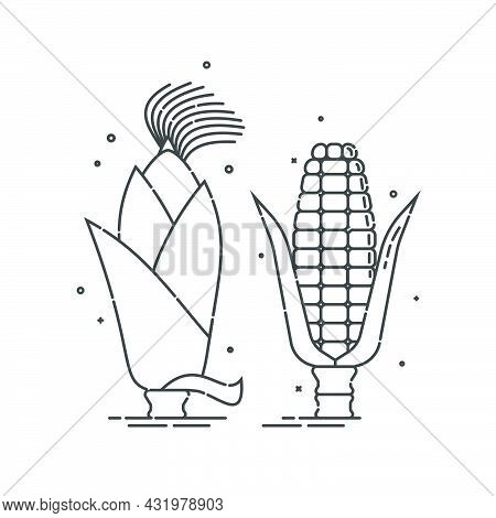 Corn On White Background. Young Ear Of Maize With Leaves And Without. Organic Food. Healthful Produc