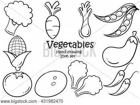 Fresh Vegetable Hand Drawn Illustration Set Consisting Of Broccoli, Carrots, Scallions, Chickpeas, T