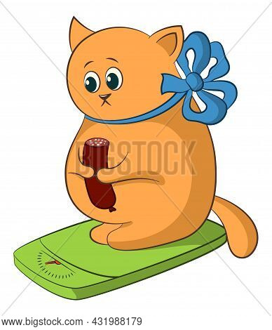 Cartoon Fat Cat Weigh Yourself On The Scale And Eat Sausage. Vector