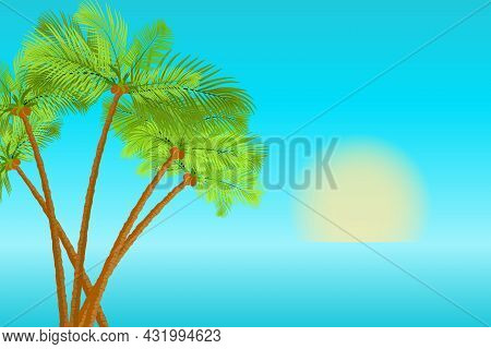 Palm Trees On The Sea Coast At Sunset. Tropical Background. Jungle Exotic Composition With Palm Tree