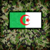 Amy camouflage uniform with flag on it Algeria poster