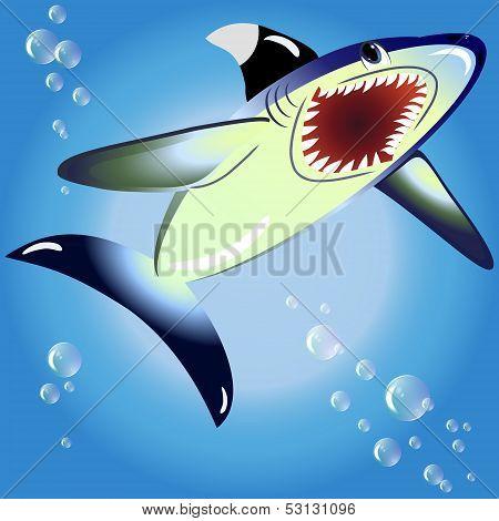 EPS10 vector illustration. shark