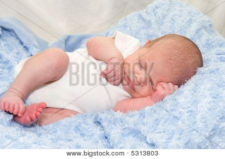 Newborn baby boy sleeping on blue blanket poster