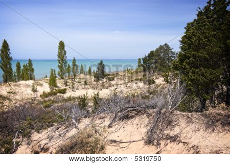 Pinery Dunes