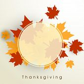 Happy Thanksgiving Day background with beautiful autumn maple leaves, can be use as flyer, banner or poster with space for your text.  poster