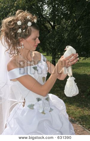 Bride And Dove