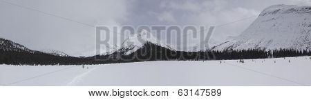 Moose Pass Panorama