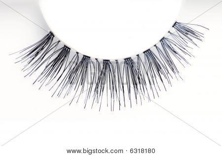 Closeup Of An Eyelash