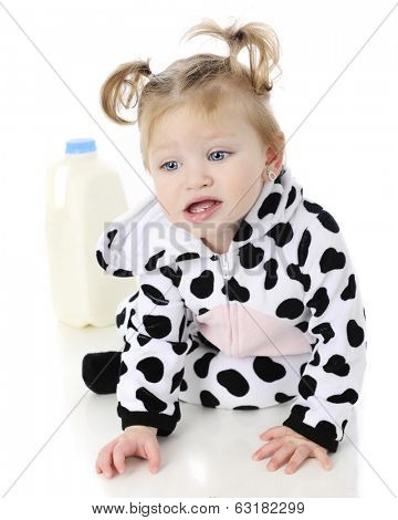 An adorable baby girl in a cow costume, unhappily crawling away in from a half-gallon of milk.  On a white background.